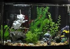 Aquarium Decoration Ideas Android Apps On Play