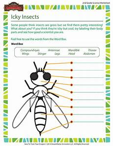 icky insects worksheet 2nd grade life science school of dragons