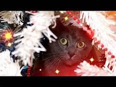 weihnachtsglocken klingen schlager neue weihnachtslieder