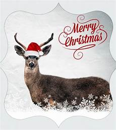 merry christmas deer free domain pictures