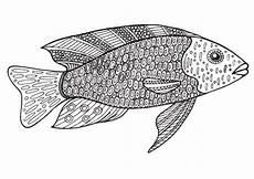 Ausmalbilder Erwachsene Fische Ausmalbilder Mandala Fische Kinder Ausmalbilder