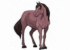 Ausmalbilder Pferde Hannoveraner Pferde Ausmalen