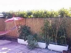 l orto in terrazza barabao creare un orto in terrazza