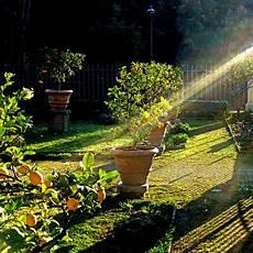 jardin en aout en ao 251 t jardiner ou partir en vacances oleomac