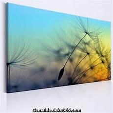 bild pusteblume leinwand xxl foto leinwand kunstdruck bild pusteblume nature b b