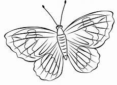 Ausmalbilder Schmetterling Ausdrucken Ausmalbilder Schmetterling Zum Ausdrucken