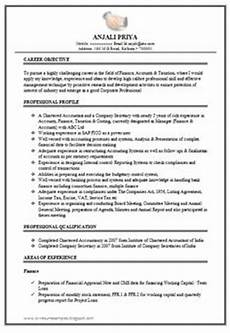 sle template of an excellent company resume sle with great profile career