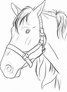 Malvorlagen Pferdekopf Kostenlos Ausmalbilder Pferde Zum Ausdrucken