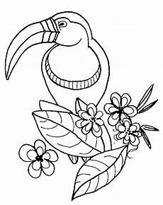 Zootiere Malvorlagen Bird Coloring Pages At Getcolorings Free