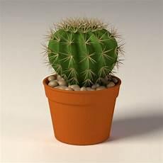 3d Model Of Cactus Pot