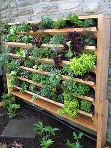 Hochbeet Balkon Selbst Bauen Garden And Forest