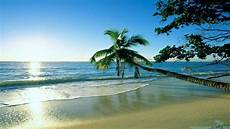 Bright Summer Cool Wallpapers cool summer wallpapers 65 images