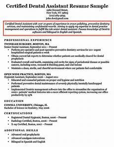 11 resume summary or objective exles auterive31 com