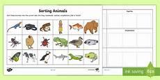 sorting and grouping worksheets 7809 sorting animals into sets worksheet worksheet sorting