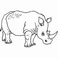 Bilder Zum Ausmalen Nashorn Nashorn Ausmalbild Malvorlagen Tiere Tiere Zeichnen