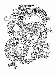 libro da colorare drago per il vettore degli adulti