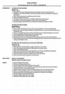 resume exles net developer resume templates senior dot net developer