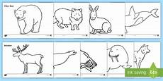 arctic animals coloring pages 16891 arctic animals colouring sheets made