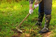 Alten Rasen Entfernen Oder Umgraben 187 Was Ist Besser