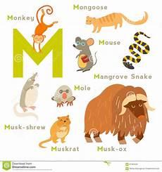 animal en g 30218 m letter animals set alphabet stock illustration illustration of musk letter 67090446