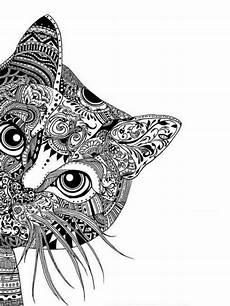 Ausmalbilder Erwachsene Zum Ausdrucken Kostenlos Malvorlage Katze Umriss 1ausmalbilder