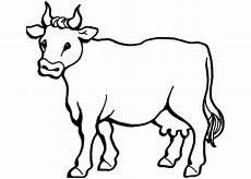 ausmalbilder kuh kostenlos malvorlagen zum ausdrucken