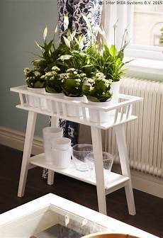 Plant Stands To Fill Your Home