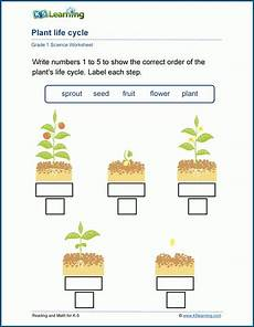 science worksheets about plants for grade 1 12109 reading and math for k5 learning