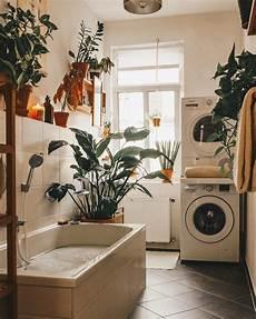 Desain Interior Ruang Cuci Multifungsi Dengan House Plants