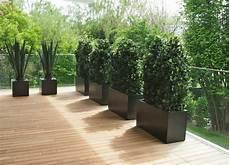 terrassengestaltung sichtschutz pflanzen wetterfeste ilex hecke kunsthecken nach mass