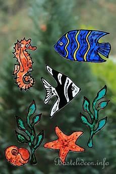 Window Color Malvorlagen Unterwasserwelt Kostenlose Malvorlage Windowcolor Engelfisch