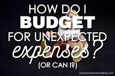 how do i budget for unexpected expenses humorous homemaking
