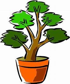 Blumen Malvorlagen Kostenlos Xyz Bonsai B 228 Ume Animierte Bilder Gifs Animationen