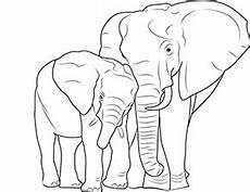 ausmalbild elefant und baby im zoo zum ausdrucken
