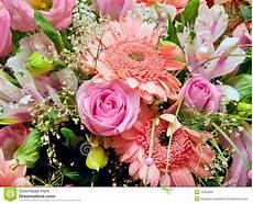 Bouquet 233 Norme Des Fleurs Photo Stock Image Du Image