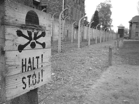 Liberation Of Birkenau