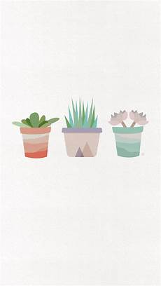 aesthetic cactus iphone wallpaper succulent background for iphone phone wallpaper in 2019