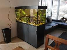 raumteiler aquarium aquariendesign dingolfing