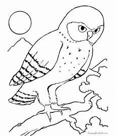 Ausmalbilder Eule Hedwig ดอกไม และธรรมชาต