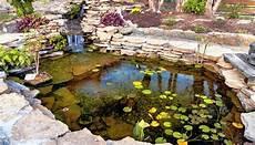 Teich Im Winter Pflegen Gartenteich Eisfrei Halten