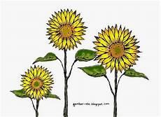 Mewarnai Gambar Bunga Matahari Contoh Gambar Mewarnai