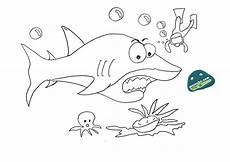 Kumpulan Gambar Mewarnai Ikan Paus