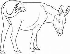 Ausmalbilder Zootiere Zeichnen Ausmalbild Esel Im Zoo In 2020 Ausmalen Ausmalbilder