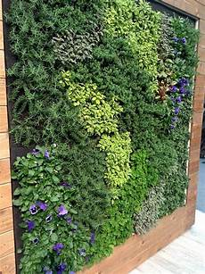 To Plant Vertical Garden by Edible Living Wall Elements Vertical Garden Vertical