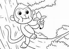kostenlose malvorlagen affen x13 ein bild zeichnen