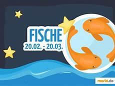 Welcher Partner Passt Zum Sternzeichen Fische Markt De