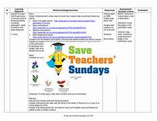 life cycle of flowering plants plan and worksheet by saveteacherssundays teaching resources tes