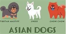 Gambar Ilustrasi Kartun Jenis Jenis Anjing Di Dunia