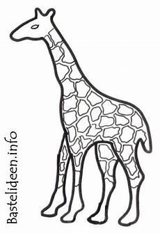 Malvorlagen Giraffen Gratis Bastelvorlage Giraffe 1045 Malvorlage Giraffe Ausmalbilder