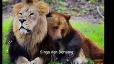 Nama Binatang Ragam Fauna Aneka Hewan